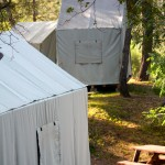 Canvas Cabin Tents: C, E, D