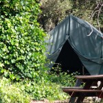 Canvas Cabin Tent: G