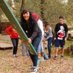 Low Ropes: Bridges Out Element