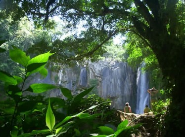 International Eco-tourism