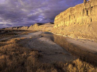 Amargosa River above Tecopa, (proposed Wild and Scenic River), Inyo County, CA
